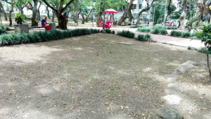 Así lucía el parque San Pío luego del corte de césped realizado por cuadrillas de la Emab la semana anterior. - Suministrada/GENTE DE CABECERA