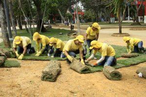 Durante el primer semestre de 2017, la Alcaldía informó que había instalado más de 19 mil metros cuadrados de grama japonesa en parques como Las Palmas, Los Niños y Turbay. - Archivo/GENTE DE CABECERA
