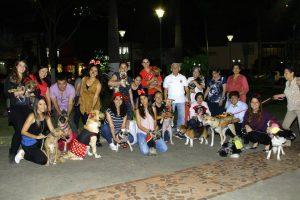 En Las Palmas, las mascotas disfrazadas y sus 'humanos' disfrutaron de una divertida noche el pasado 31 de octubre. - César Flórez / GENTE DE CABECERA