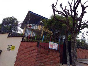 Los vecinos piden que se cuide la arborización. - Suministrada / GENTE DE CABECERA