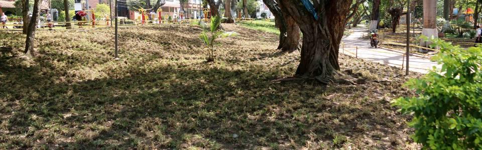 Avanza embellecimiento en el parque San Pío
