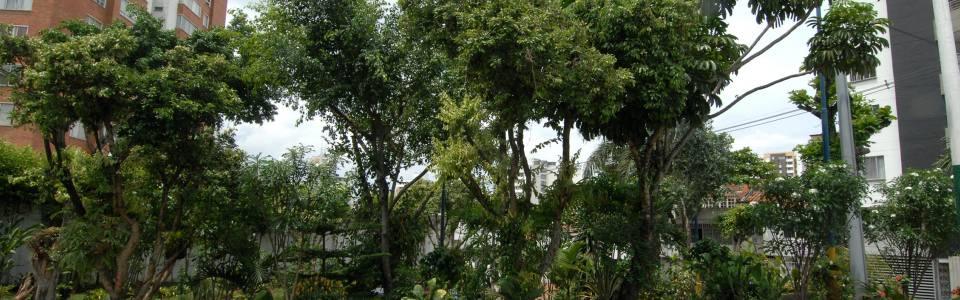 Parque Rosales, ejemplo de ciudadanía