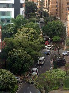 El sector que requiere poda, de acuerdo con el ciudadano, está ubicado en cercanías a la Registraduría. - Suministrada/GENTE DE CABECERA