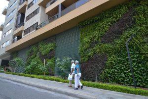 Los muros verdes son una opción para mitigar la 'isla de calor', fenómeno producido por el aumento de construcciones de concreto en la ciudad. - Archivo/GENTE DE CABECERA