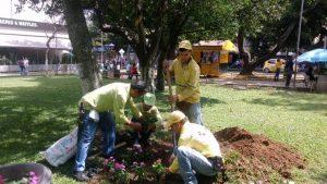 La Emab se encargará del cuidado y mantenimiento de las especies sembradas durante la actividad. - Suministrada/GENTE DE CABECERA
