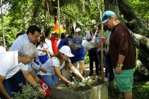 Cerca de 300 plantas de diferentes especies fueron sembradas durante la mañana del pasado sábado en el parque San Pío. - César Flórez/GENTE DE CABECERA