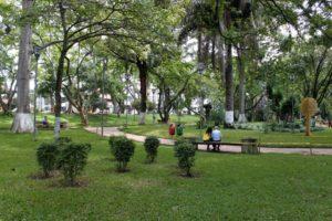 La comunidad espera seguir manteniendo en perefectas condiciones las diferentes zonas verdes del parque San Pío. - Jaime del Río/GENTE DE CABECERA