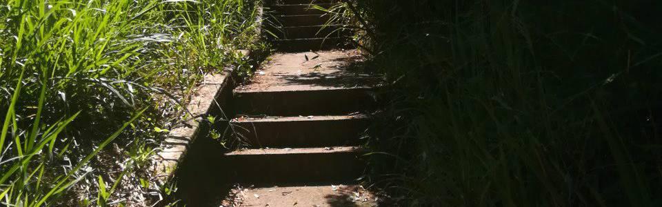 Piden mantenimiento a senderos  peatonales en Altos de Pan de Azúcar