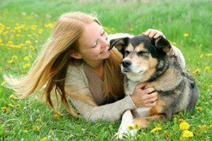Los problemas salud más comunes en perros mayores son las enfermedades oculares, pérdida de la audición, enfermedades articulares y la pérdida de piezas dentales. - Banco de Imágenes/ GENTE DE CABECERA