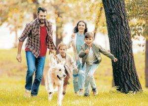 Los paseos para los perros son muy importantes, porque se desestresan y previenen futuros daños en las casas. - Banco de Imágenes/GENTE DE CABECERA