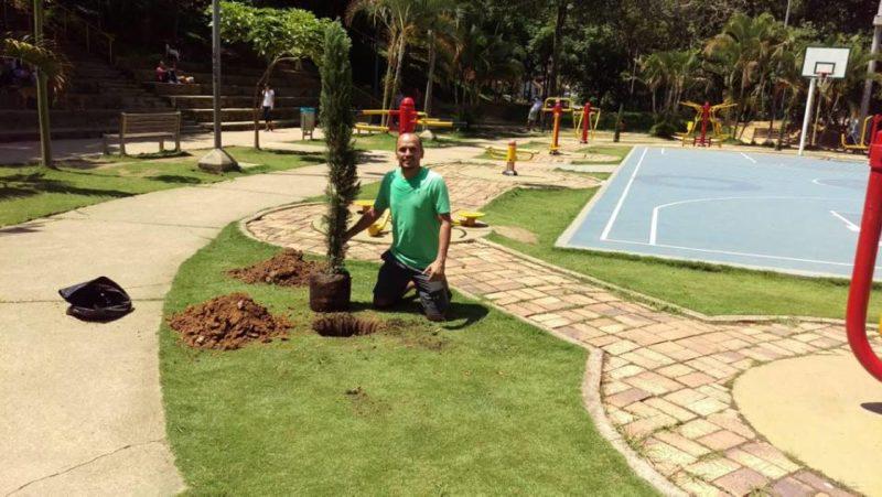 Los cerca de 70 árboles que han sido donados por Carlos Luis, han sido sembrados en el parque con ayuda de vecinos y visitantes del parque. - Suministrada / GENTE DE CABECERA