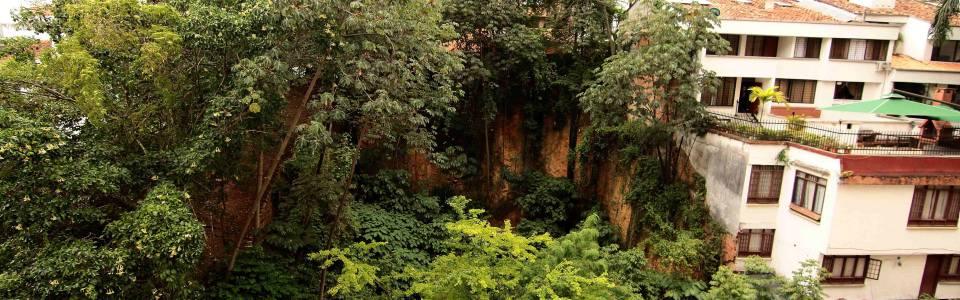 Fallo de tutela obliga a la Alcaldía de  Bucaramanga a intevenir lote de la carrera 39