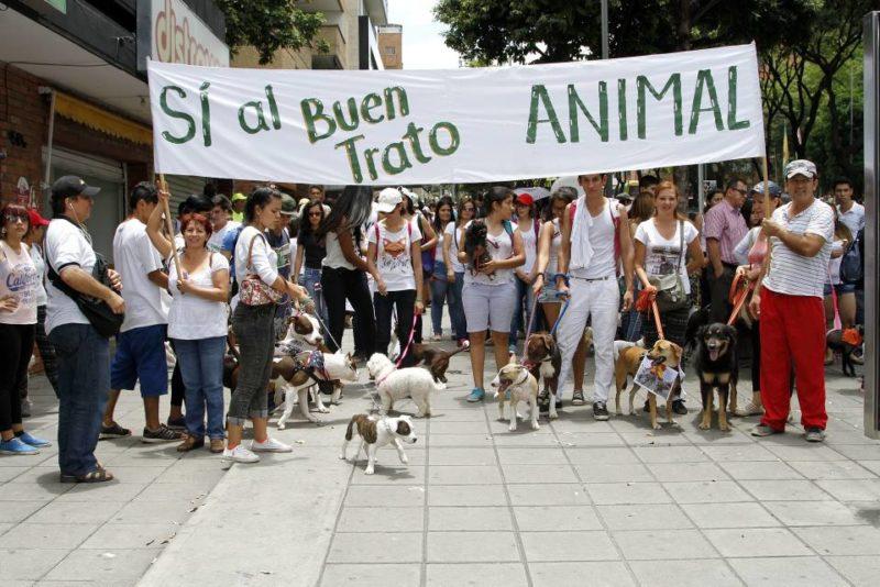 El plantón busca reunir a las cientos de personas que velan por la vida animal. - Archivo/GENTE DE CABECERA