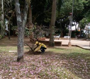 Ante las reiteradas solicitudes, la comunidad de Conucos agradeció la asignación de un parquero para cuidar de la zona verde de ese sector de la ciudad. - Suministrada / GENTE DE CABECERA