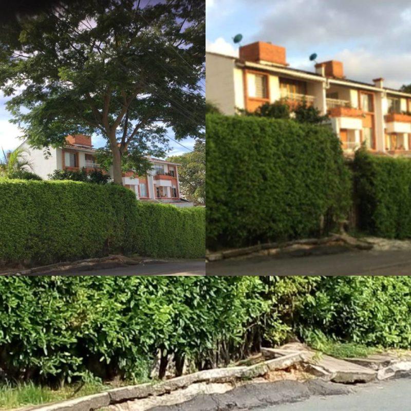 Después de la tala, la comunidad de Altos de Pan de Azúcar pide se repare el andén afectado por la raíz del árbol. - Suministrada / GENTE DE CABECERA