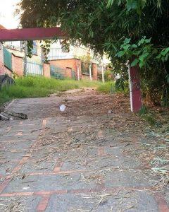 Además de la basura, los senderos y demás zonas del parque se encuentran sucias y descuidadas. - Suministrada / GENTE DE CABECERA