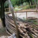 UDI propone campaña para salvar el parque Leones
