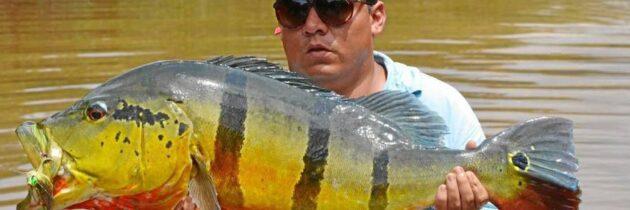 Juan Carlos…como pez en el agua