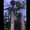 Cornetas de barrio El Prado no funcionan