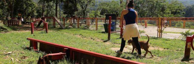 Persiste el deterioro de zona canina del parque Carlos Virviescas