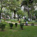 Permanece el resplandor  del parque San Pío