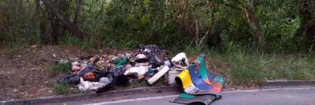 Recicladores informales generan desorden