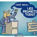 Can-pañas