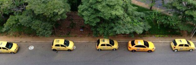 Continúan los taxistas 'mal parqueados'