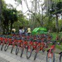 Reanudan préstamo de  bicicletas públicas