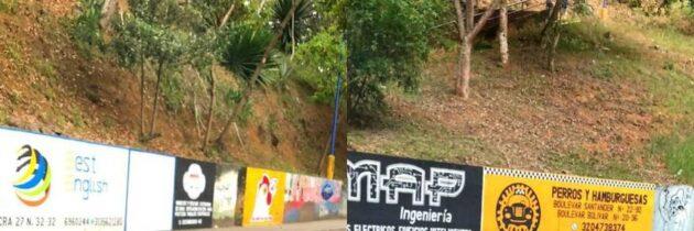 Piden regulación de murales publicitarios en espacio público