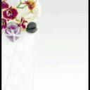 Respire las bondades  de la aromaterapia