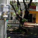 Ambulantes se cuelgan 'legalmente' de la luz