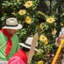 Folclor santandereano en Brasil