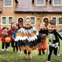 Dulce y color para celebrar Halloween