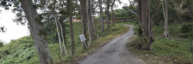 Sigue la disputa por proyecto en los Cerros Orientales de Bucaramanga